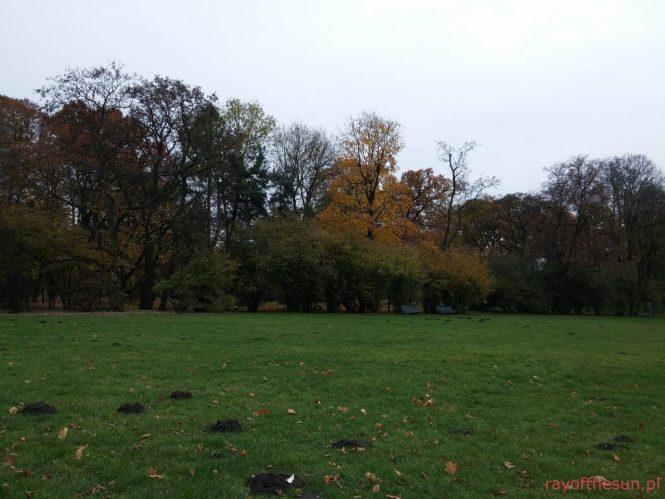 jesien-w-parku-jordana-11
