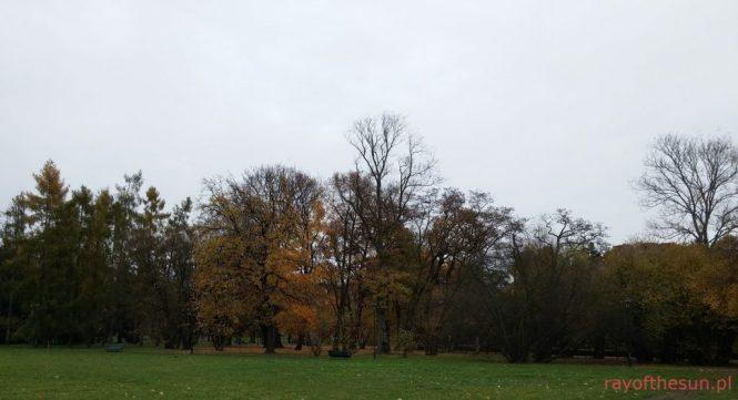 jesien-w-parku-jordana-12