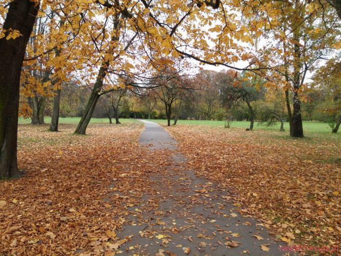 jesien-w-parku-jordana-8