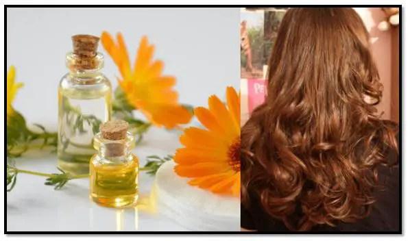 aceite de girasol para el pelo