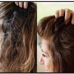 Como Usar La Henna Para Las Canas