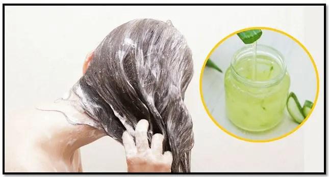como hacer shampoo casero de sábila