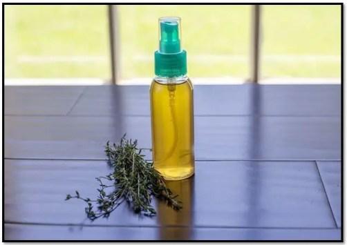 aceite de tomillo casero