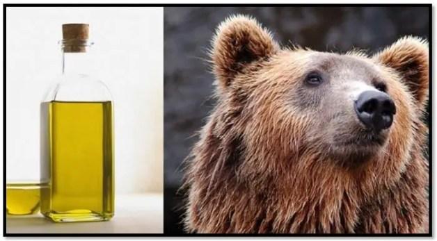aceite de oso para el cabello