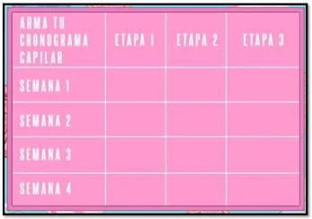 cronograma capilar casero