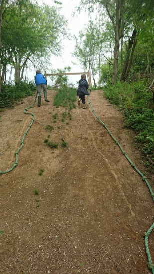 Ropes in the Woods