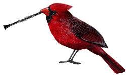 cardinal clarinet