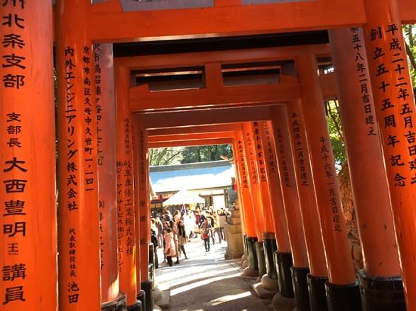 gate6