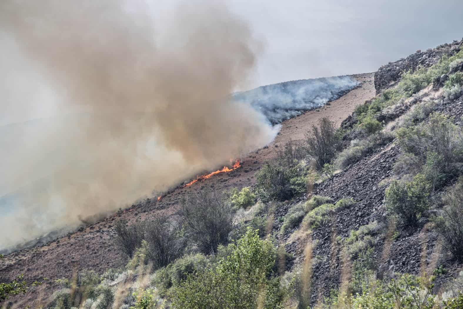 Brush fire burning in a canyon in central Washington.