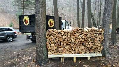 kiln-dried firewood stacked between trees