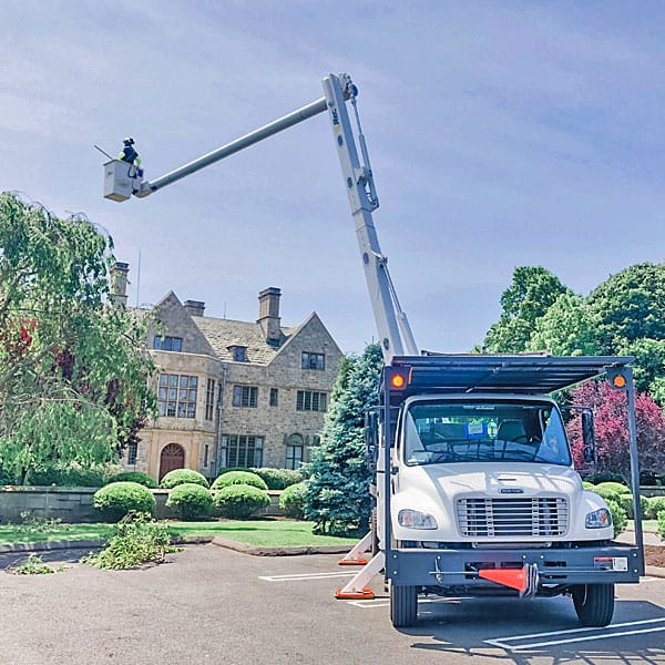 Rayzor's Edge Tree Service bucket truck lifting arborist into a tree