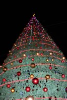 Christmas Tree and holiday in Amman Jordan beautiful in Fuheis near by amman in jordan