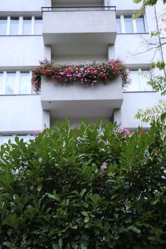 Floral Balcony