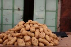 بطاطا، Potato
