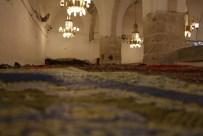Ibrahim Mosque, المسجد الابراهيمي