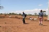 People, African, Tanzanian, Moshi, Tanzania, Kilimanjaro