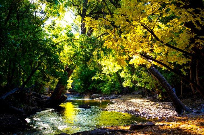 fall-colors-drive-2016-6881