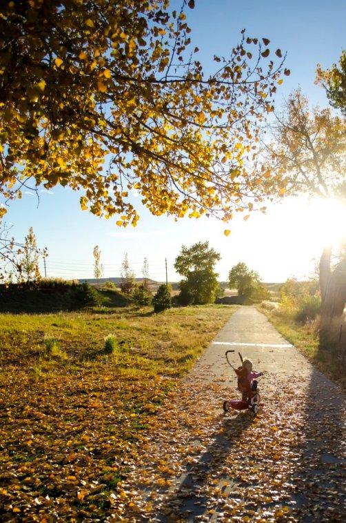 fall-photos-7031