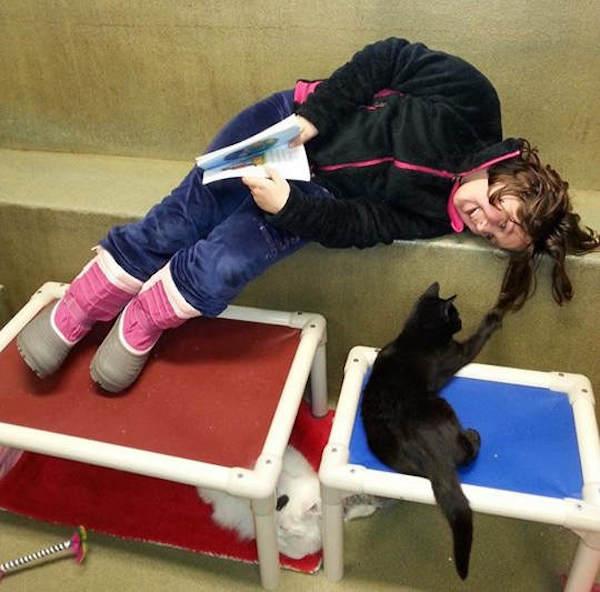 criancas-leem-gatos-abrigo-9