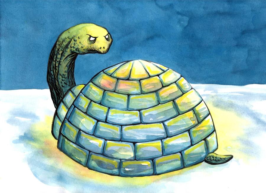 Icebox Turtle