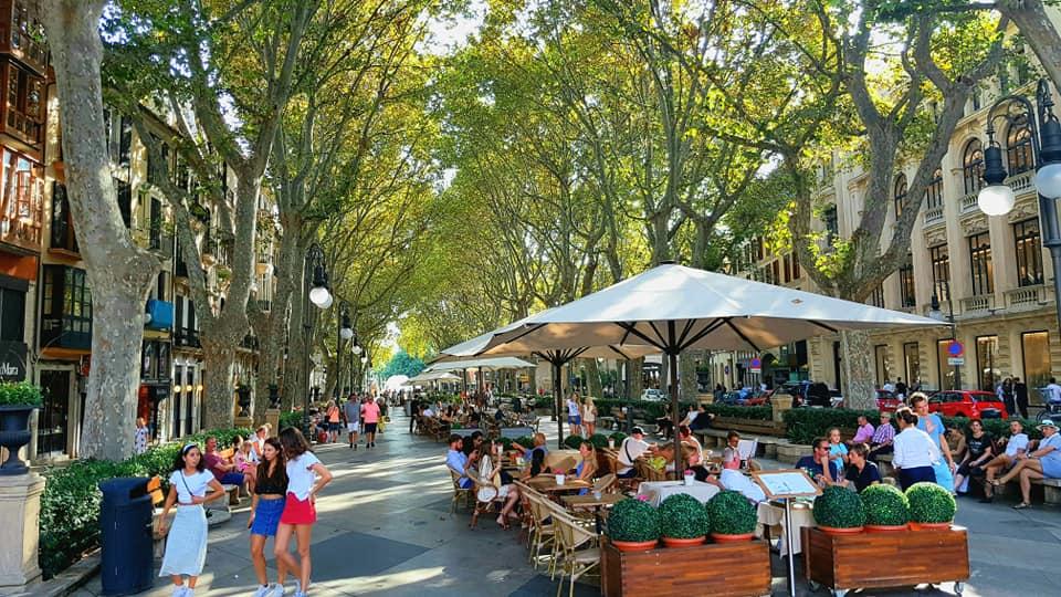 Terase Mallorca