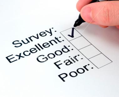 sondaje online