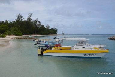 Seychelles, insula La Digue 2