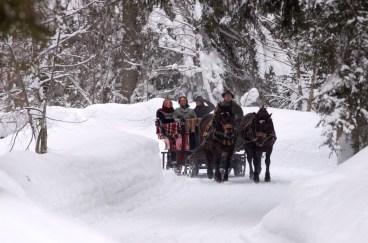 Schlittenfahrt in Saalbach Hinterglemm Leogang