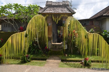 Insula Bali 26