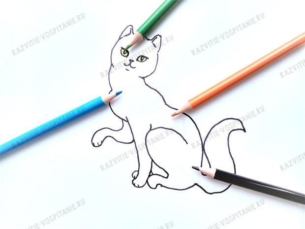 CAT 06.