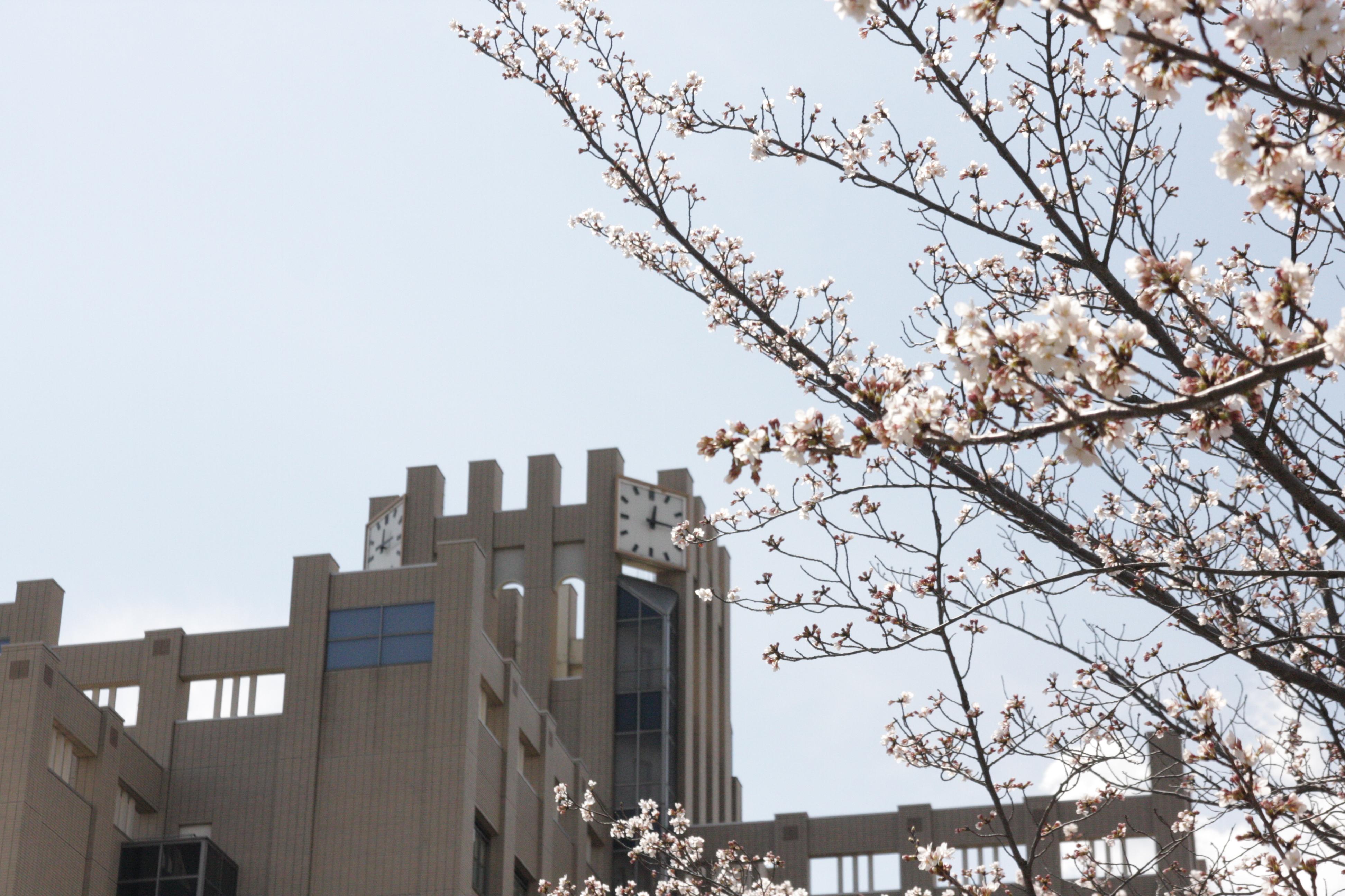 2014年度立命館大学入学式(BKC編 その1)