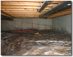 crawl space before insulation