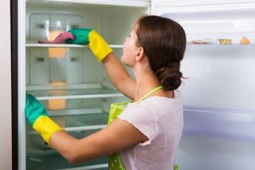 мийка холодильника