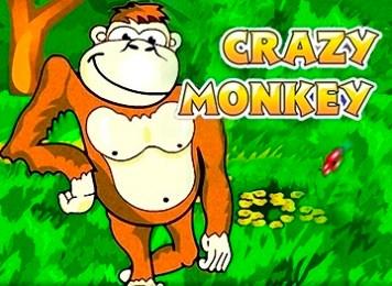 Игровые автоматы сборник - crazy monkey стратегии игры в покер в онлайне