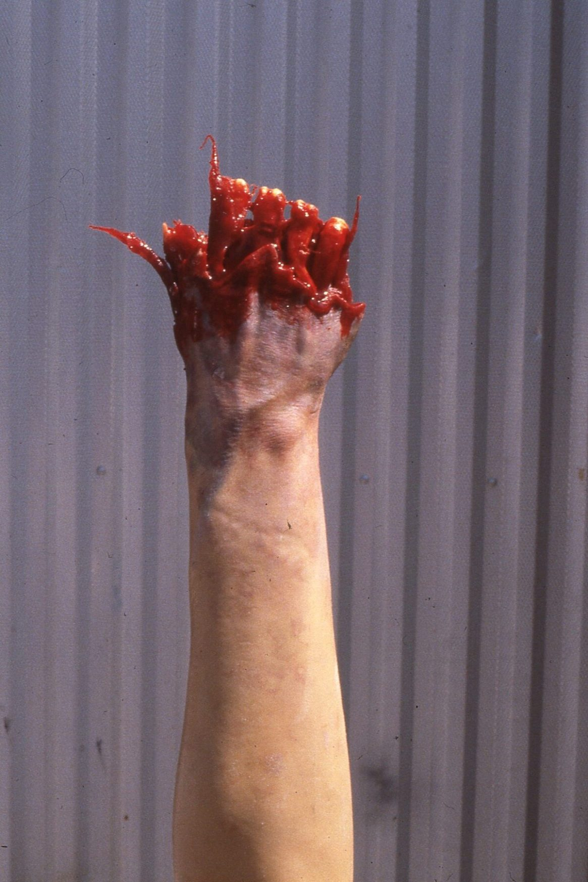 Disposial hand3