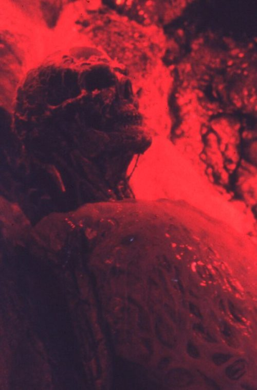 NoES4 Freddy resurrection_Skin melt torso CU
