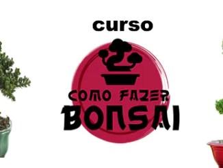 Curso De Bonsai Como Fazer Bonsai.