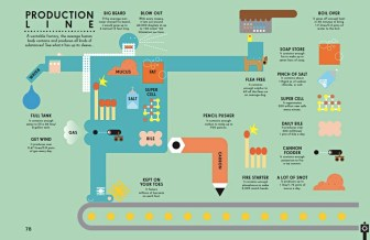 The body as a production line infographic