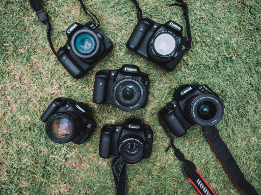 Digital Camera Mistakes That Lead To Disappointing Pictures - canon cameras -rachel carter images photography tips