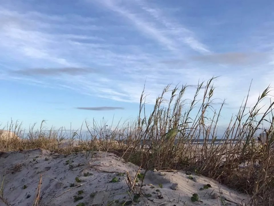 The dunes in North Topsail Beach after Hurricane Florence (Nov 2018) taken by Kelly Northcutt - RCI Plus Topsail