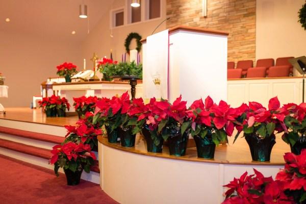 Rachel Carter Images RCI Plus Topsail Sneads Ferry Presbyterian Church Christmas Eve Pointsettas
