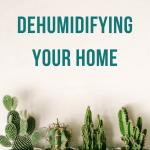 dehumidifying your home - RCI Plus Topsail