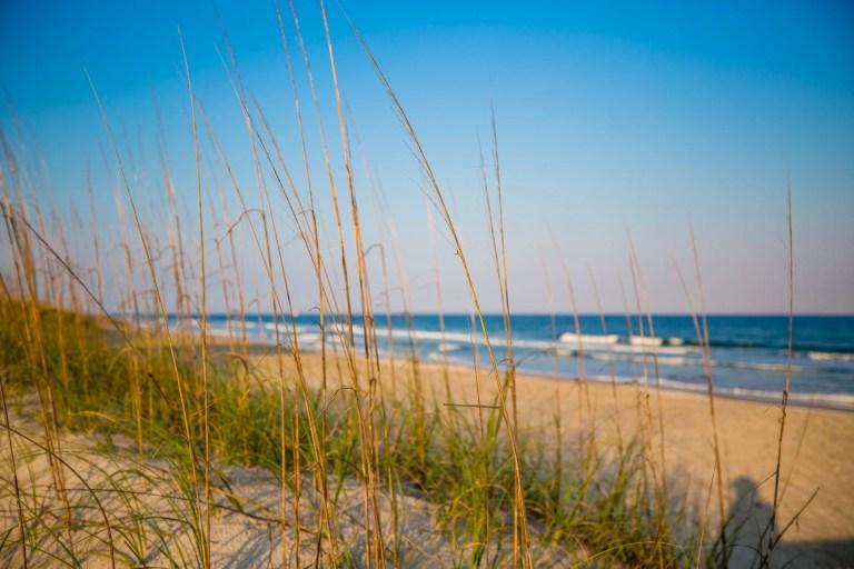 North Topsail Beach Dunes Pre-Hurricane Florence - RCI Plus Topsail - Rachel Carter Images
