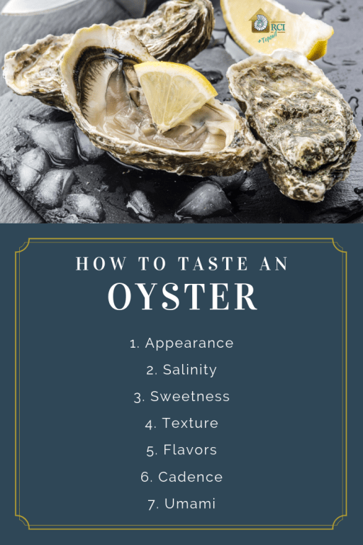 how to taste an oyster - RCI Plus Topsail