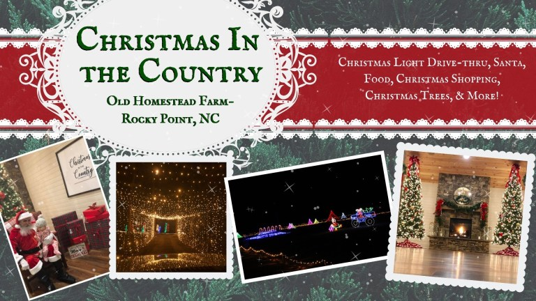 Christmas in the Country details