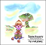 Amazon.co.jp: Sanctuary/THE STAR ONIONS: THE STAR ONIONS: 音楽