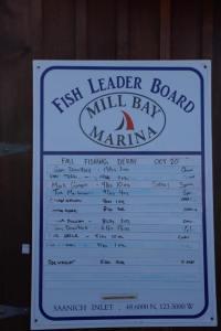fishing leader board