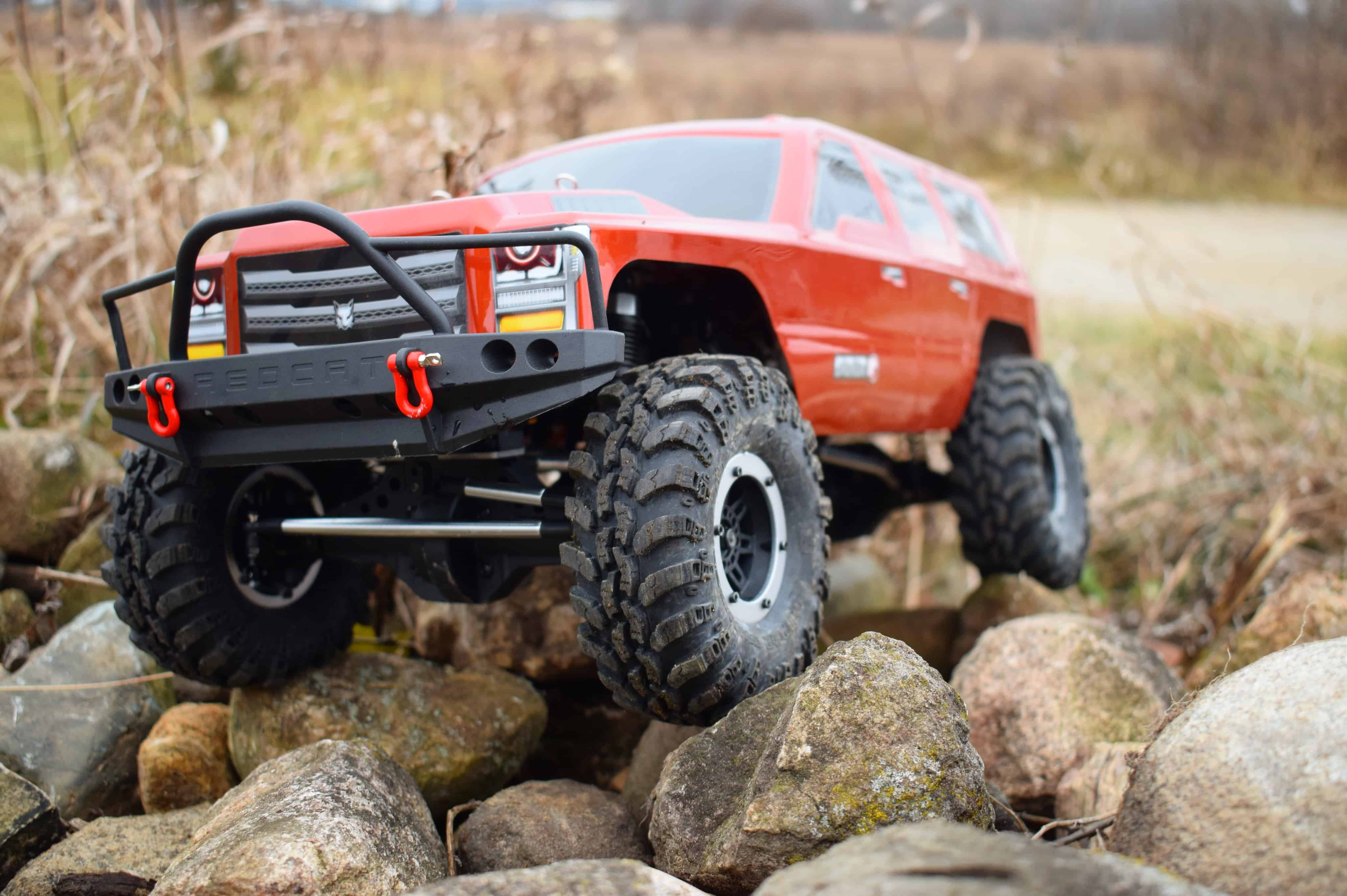 A Redcat on the Rocks [Video]