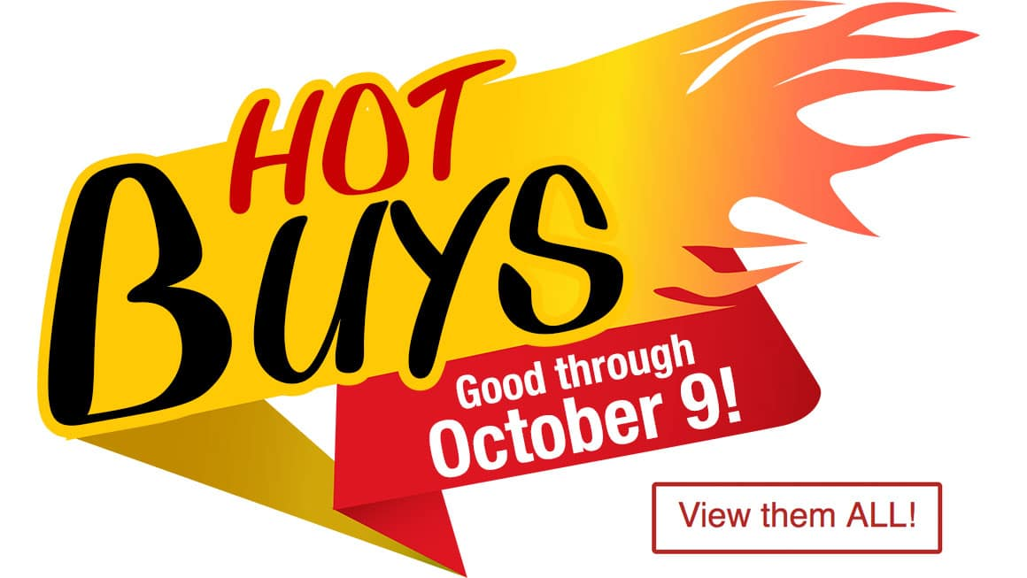 """Fly into Fall with These """"Hot Buys"""" from Tower Hobbies"""