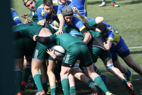 17-03-12-JUNIORS-RCS-MONTESSON0012